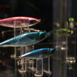 Colorful lures on display